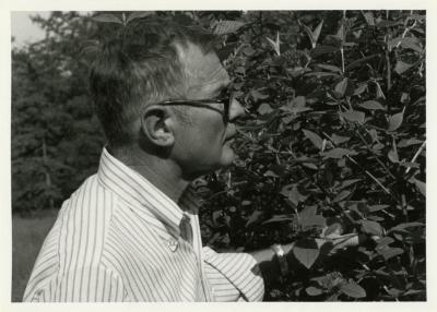 Ray Schulenberg studying plant outside
