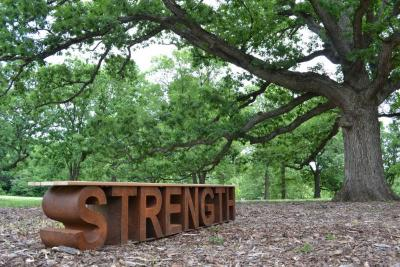STRENGTH bench in the oak (Quercus) collection at The Morton Arboretum