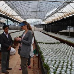 Nicole Cavender examining plant samples at the Yunnan Academy of Agricultural Sciences in China