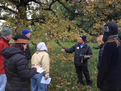 Kris Bachtell teaching a class on oaks on the grounds of The Morton Arboretum