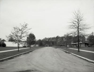 Road into completed Arbordale housing development