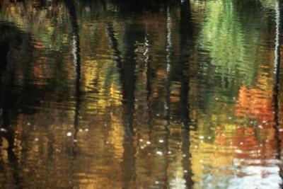 Arbor Lake water abstract