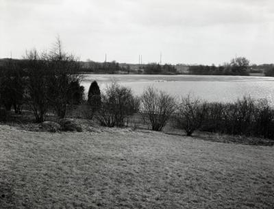 View of Arbor Lake from behind wire fence in winter
