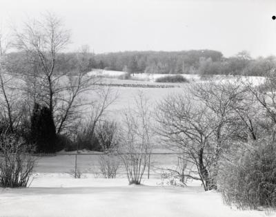 Snow covered Arbor Lake with geese, view from behind wire fence in winter