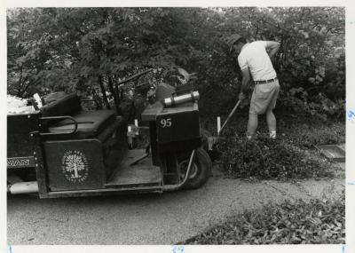 John Sosnowski working in Ground Cover Garden