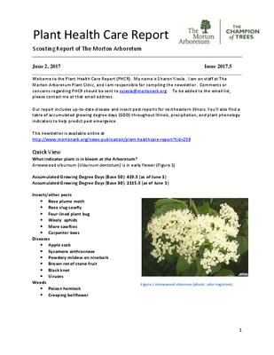 Plant Health Care Report, Issue 2017.5