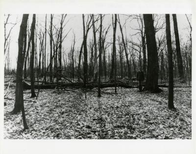 Jerry Wilhelm in the East Woods