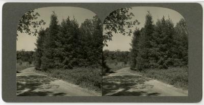 Ridge Road above geographic groups looking east, stereograph