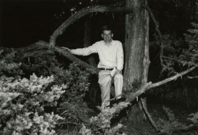 Peter van der Linden sitting on low hanging tree branch
