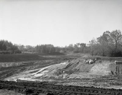 Arbor Lake excavation