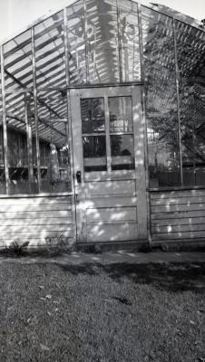 The Morton Arboretum's first greenhouse at South Farm (built Spring 1922), entrance door