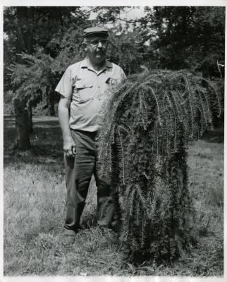 Roy Nordine outdoors standing next to plant