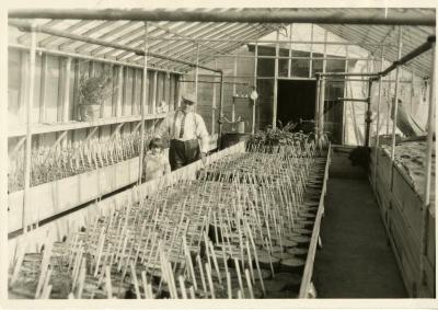 John Van Gemert in greenhouse with daughter, Janet