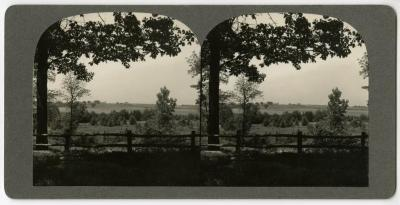 View from lookout over Geographic Groups toward northwest, stereograph