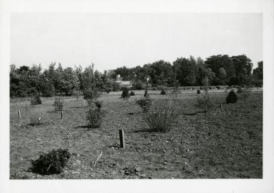Test garden southeast of propagating houses