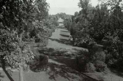 Hedge Garden looking east thru rotunda