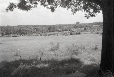 View from burial plot toward Lisle with tree on right