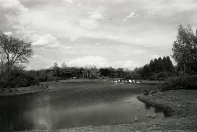 Meadow Lake looking east