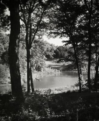 Sterling Pond looking north from Clarence Godshalk's yard