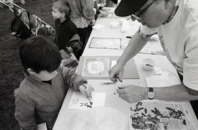 Arbor Day activities at The Morton Arboretum, boy at Be a Botanist station creating Herbarium specimen