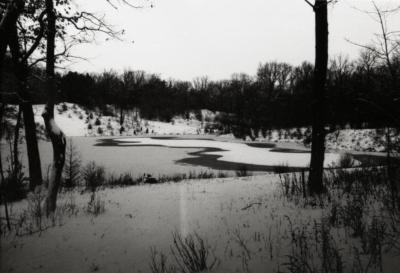 Pond on south side of Japanese Island in winter
