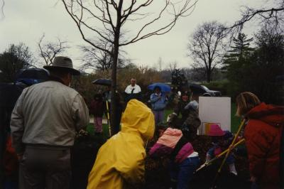 Arbor Day, children planting tree with Carolyn Finzer dressed as Morton Oak