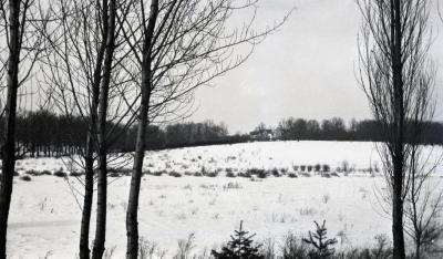 Crabapple area in winter looking toward Thornhill
