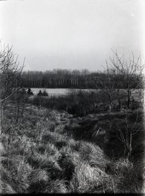 Path near Puffer Lake looking south