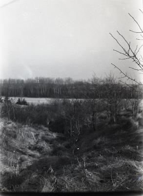 Landscape along path near Puffer Lake looking south