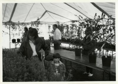 Arbor Day, Surplus Plant Sale