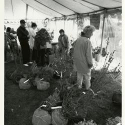 Arbor Day/Week, Marsha Davis planting with children