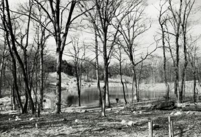Sterling Pond looking north through bare trees from Clarence Godshalk's yard