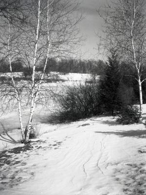 Looking northeast across Lake Marmo in winter