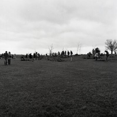 Arbor Day Centennial, Centennial Grove tree planting, several people in groups planting trees in the distance