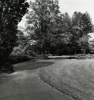 Path leading up to Administration Building lily pond