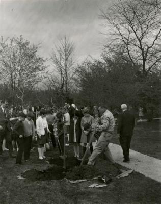 Arbor Day, tree planting