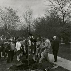 Arbor Day, children planting tree