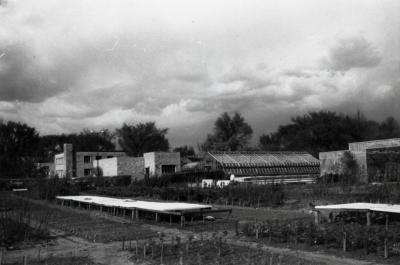 Greenhouse and nursery plot with Administration Building behind
