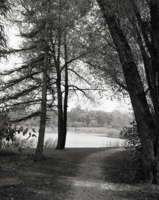 Meadow Lake along Illinois Trees Trail Loop