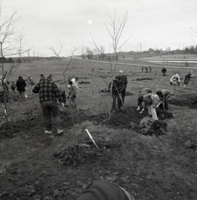 Arbor Day Centennial, Centennial Grove tree planting, many people planting several trees