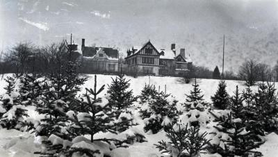 Young evergreens in foreground of Morton residence, south view in winter
