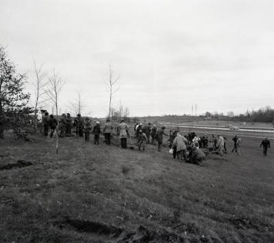 Arbor Day Centennial, Centennial Grove tree planting, large groups of people planting trees