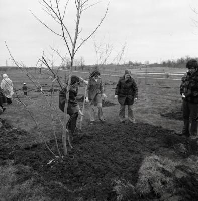 Arbor Day Centennial, Centennial Grove tree planting, two women and a man watch as a woman shovels dirt over newly planted tree