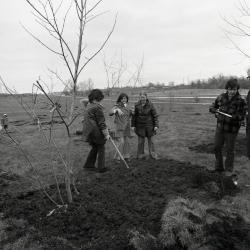 Arbor Day Centennial, Centennial Grove tree planting, group of four planting tree
